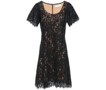 Woman Scalloped Cotton-blend Corded Lace Mini Dress Black