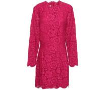 Cotton-blend Corded Lace Mini Dress Fuchsia