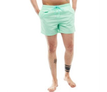 Mens Pier Swim Shorts Mint Green