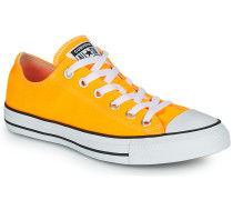 Sneaker Chuck Taylor All Star Seasonal Color