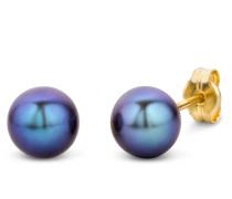 """Ohrringe Earrings Pearl """"The Trendsetter"""" 14KT Yellow Gold"""