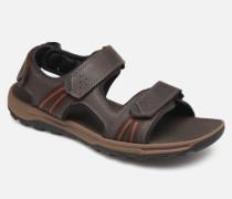 TT 3 Strap Sandal C Sandalen in braun