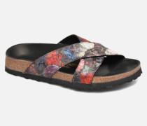 DAYTONA Clogs & Pantoletten in mehrfarbig