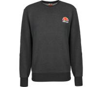 Diveria Crew Herren Sweater grau meliert