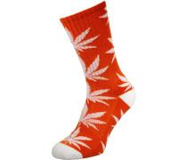 Plantlife Socken orange