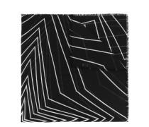 Wollschal mit grafischem Print