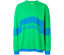 block colour sweatshirt