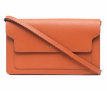 Compartments Clutch