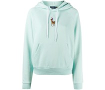 embroidered polo hoodie