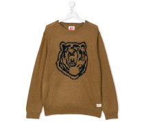 knitted bear pullover