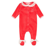 Pyjama azalee