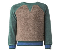 SWEATER BEAVERTON Fleecepullover light green