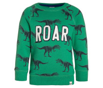Sweatshirt parrot green