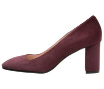Pumps bordo