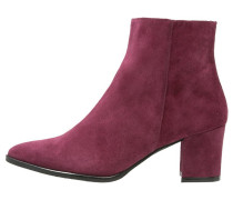 Ankle Boot vino