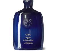 Shampoo for Brilliance & Shine, 250ml