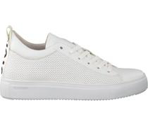 Sneaker Rl71