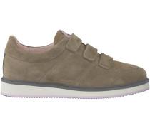 Taupe Nubikk Sneaker NOAH STRAPS