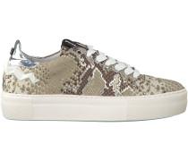 Taupe Floris van Bommel Sneaker 85234