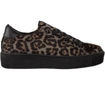 Braune Maruti Plateau Sneaker CATO