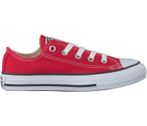 Rote Converse Sneaker CHUCK TAYLOR ALL STAR SEASONAL