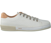 Weiße Greve Sneaker 6179
