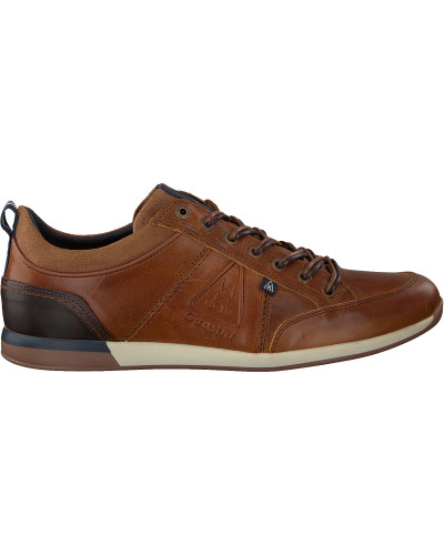 Cognacfarbene Gaastra Sneaker Bayline Dbs
