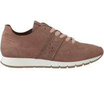 Rosa Via Vai Sneaker 5001009