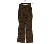 Hose Ming Pants