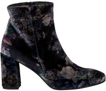 Mehrfarbige Tosca Blu Shoes Stiefeletten SF1720S810