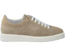 Beige Nubikk Sneaker NOAH LACE STUDS