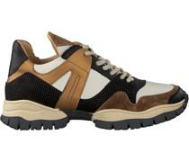 Sneaker Low Alisha Count