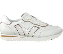 Sneaker Low 30438