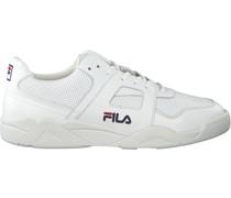 Sneaker Cedar Low
