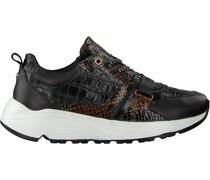 Fred de la Bretoniere Sneaker Low 101010148 Grün Damen