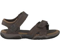 Braune Timberland Sandaletten OAK BLUFFS LEATHER 2 STRAP KID