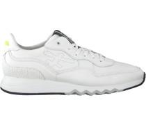 Sneaker 16093