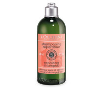 REPAIR SHAMPOO - 300 ml