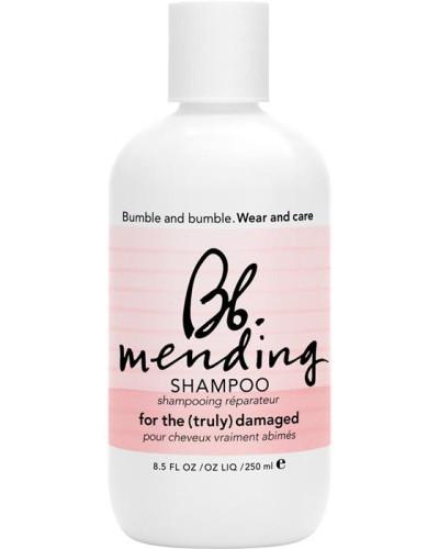Shampoo Mending