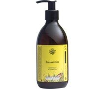 Collections Lemongrass & Cedarwood Shampoo