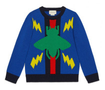 Kinder Pullover mit Käfern und Webstreifen