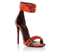 "highheels ""cougar"""