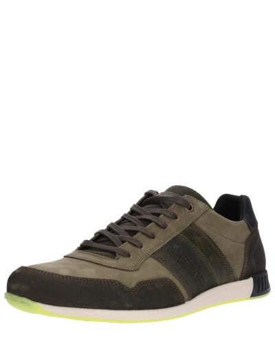 Sneaker khaki / oliv