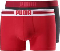 Boxer dunkelbraun / rot