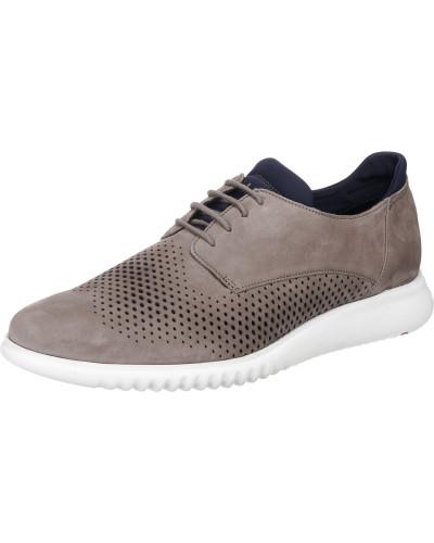 Abott Sneakers Low dunkelblau / greige