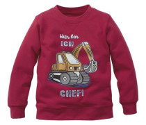 "Sweatshirt ""überflieger"" pink"