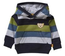 Baby Kapuzenpullover für Jungen blau / hellgrau / grün