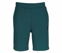 Shorts 'eqt Shorts' grün