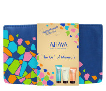 The Gift of Minerals Kit