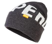 Herren Logo Beanie grau
